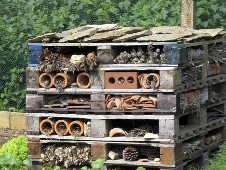 Гостиница для насекомых