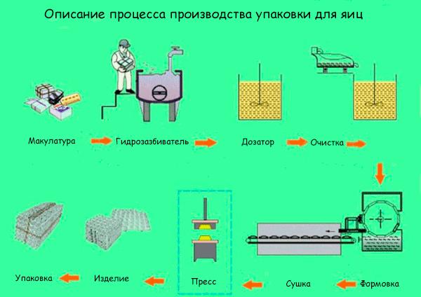 Описание процесса производства упаковки для яиц