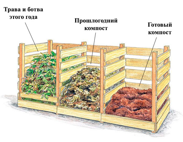 Этапи приготовления растительного компоста