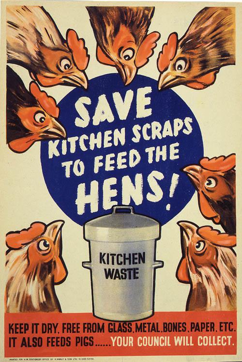 Сохранить кухонные отходы, чтобы накормить кур!
