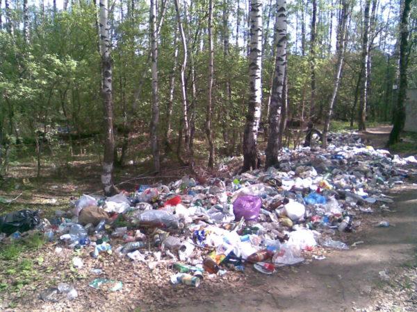 Свалка мусора в селькой местности