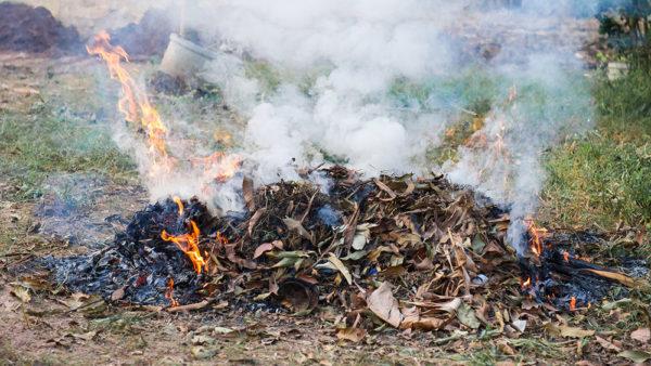 Сжигание мусора на дачном участке