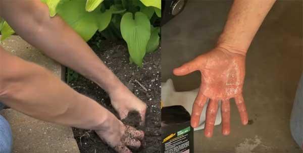 Биологические перчатки