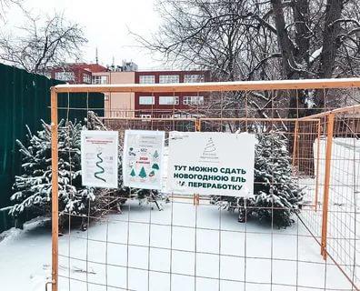 Площадка для сбора елок по акции Ёлочный круговорот